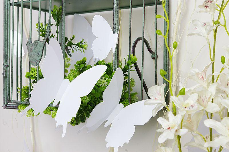 Muurstickers Slaapkamer 3d : Home / 3D Vlinders / 3D Vlinders Wit
